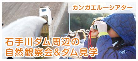 石手川ダム周辺の自然観察会&ダム見学